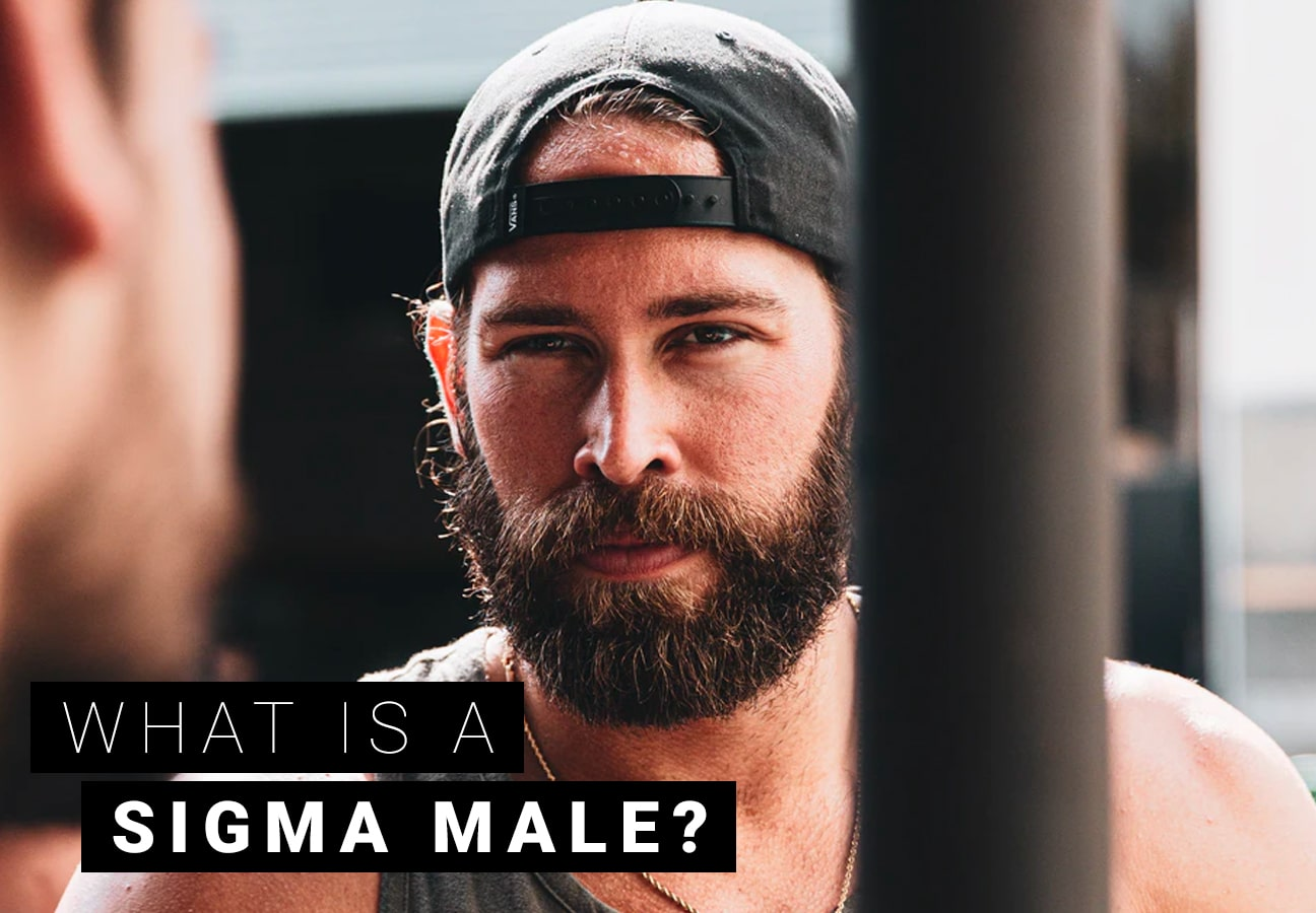 What is a sigma male?